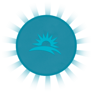 visiion-icon